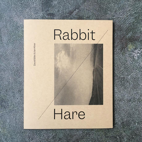 "DAVID BILLET & IAN KLINE ""RABBIT / HARE"""