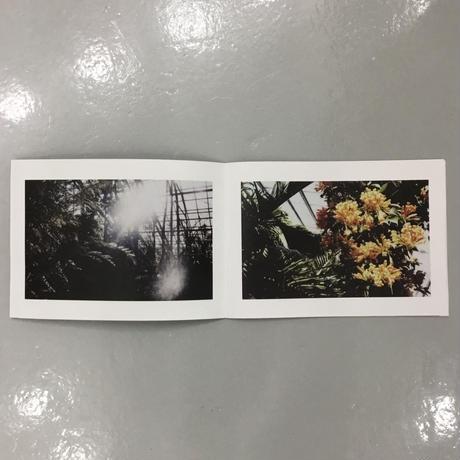 """Tetsuya Yamakawa """"herbarium"""""""