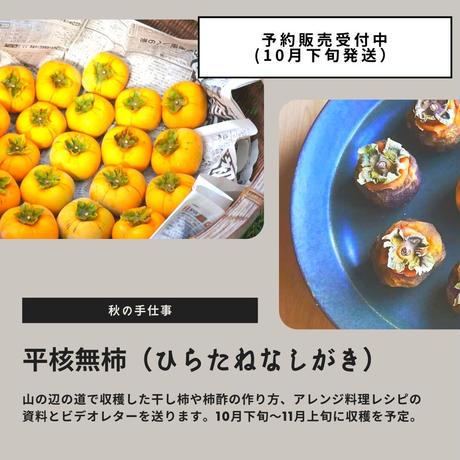 山の辺の道の「平核無柿(ひらたねなしがき)」30個 + レシピ付き(予約販売)