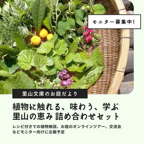 <モニター募集>里山のお庭だより 〜植物に触れる、味わう、学ぶ〜