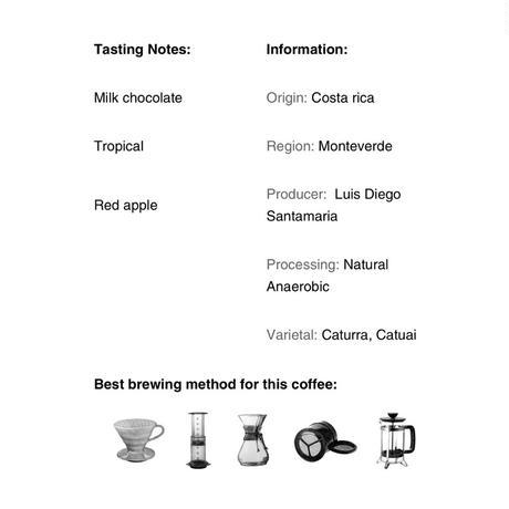 コーヒー豆/ costa rica el trapiche(200g)