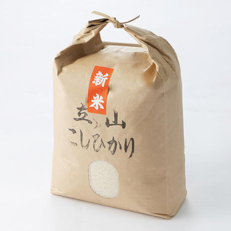 立山こしひかり/精米10キロ【令和3年新米】