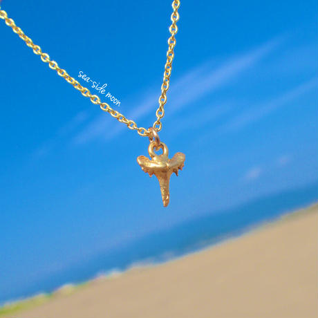Shark tooth Necklace【Silver925】