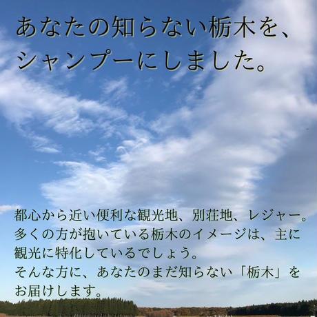 柚子とお米で感じるほのかな和 栃木の柚子(シャンプー)
