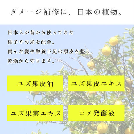 柚子とお米で感じるほのかな和 栃木の柚子 シャンプー&トリートメント トライアルセット
