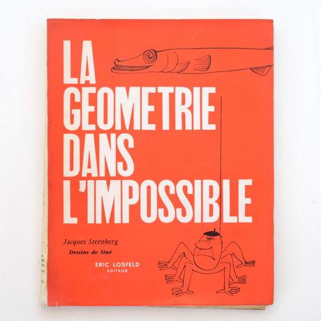 LA GEOMETRIE DANS L'IMPOSSIBLE