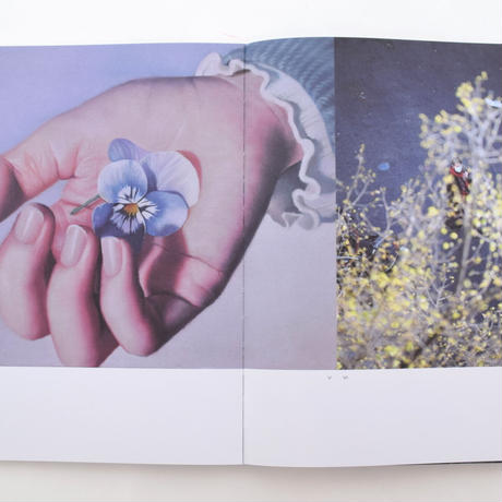 A Magazine 21: Curated By Lucie And Luke Meier
