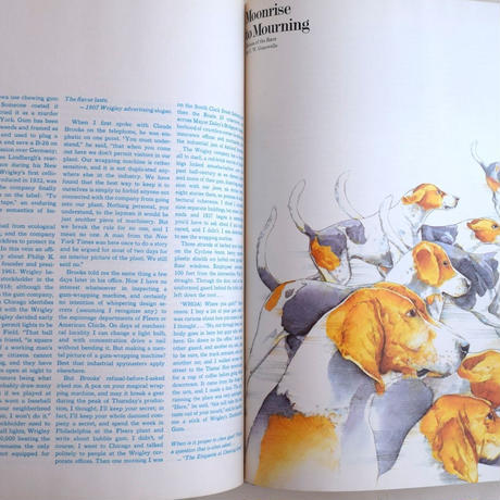 audience magzne 1972 vol.2 no.3