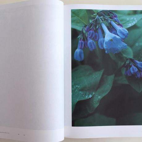 Mies van der Rohe / Photographs by Yoshihiko Ueda