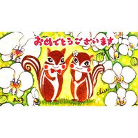 小箱10個セット・胡蝶蘭(おめでとうございます) チョコくるみクッキー