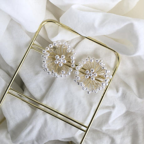 【送料込1500yen】Silver925 earrings #3