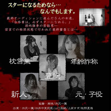 「オーディション」DVD