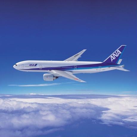 ANA 国内線 航空券 チケット