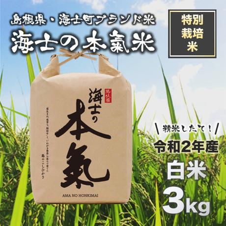 【令和2年産】ブランド米◆海士の本氣米 白米3kg*精米したてをお届け!<特別栽培米>