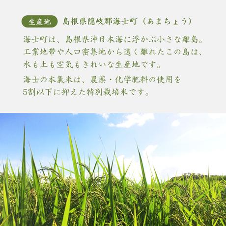 【令和2年産】ブランド米◆海士の本氣米きぬむすめ おためし2合パック<特別栽培米>