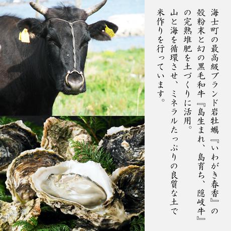 【令和2年産】ブランド米◆海士の本氣米 玄米3kg<特別栽培米>