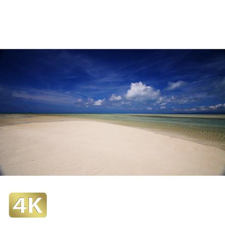 1039010 ■ 竹富島 コンドイビーチ