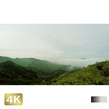 1009002 ■ 長野・群馬 高原