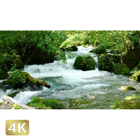 1035030 ■ 奥入瀬渓流 阿修羅の流れ