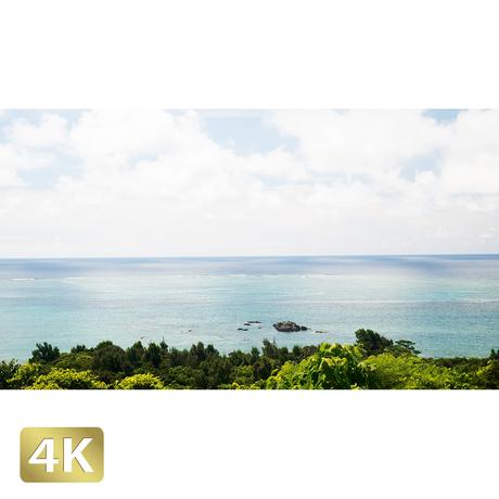 1038030 ■ 石垣島 太平洋