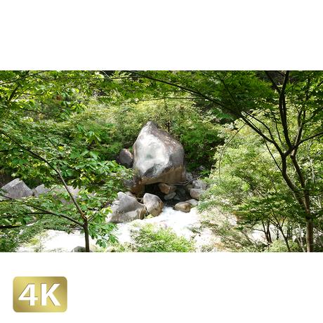 1011007 ■ 昇仙峡 渓流