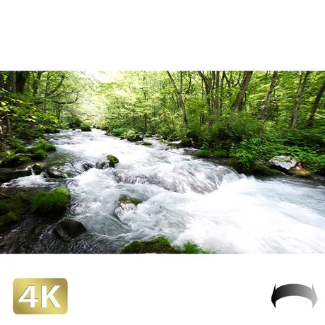 1035013 ■ 奥入瀬渓流 渓流