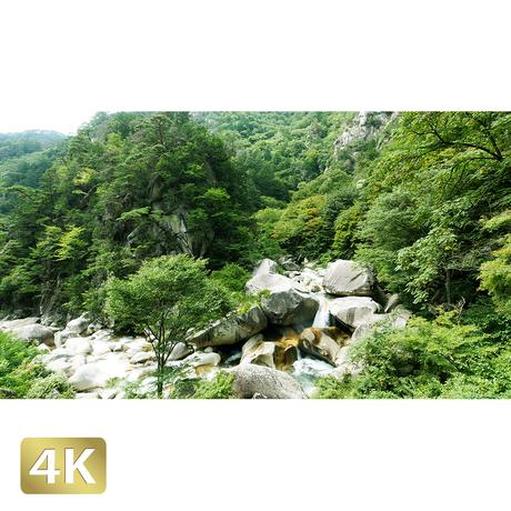 1011004 ■ 昇仙峡 渓流