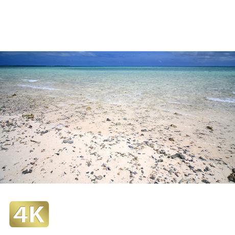 1038012 ■ 石垣島 浜島
