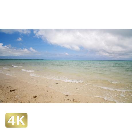 1038010 ■ 石垣島 浜島