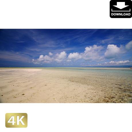 2039009 ■ 竹富島 コンドイビーチ