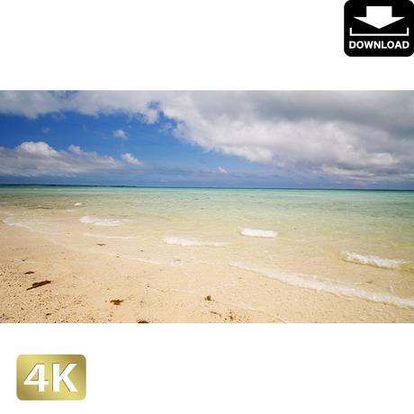 2038008 ■ 石垣島 浜島