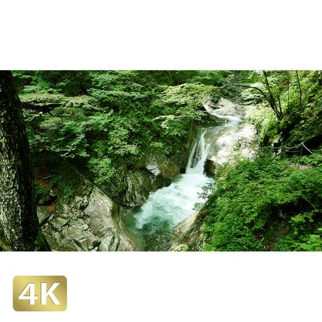 1010012 ■ 西沢渓谷 貞泉の滝