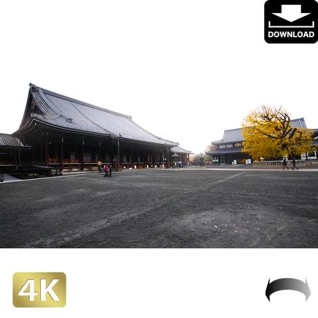 2043118 ■ 京都 西本願寺 紅葉