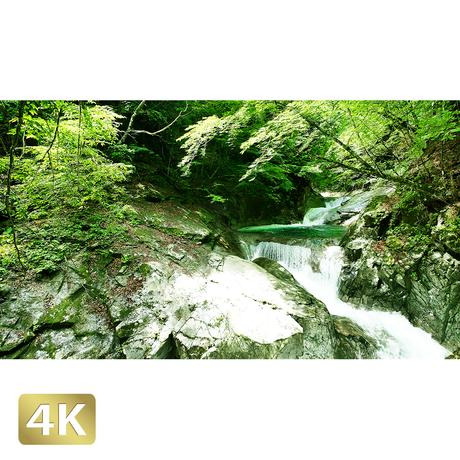 1010005 ■ 西沢渓谷 三重の滝