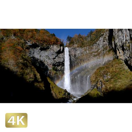 1014008 ■ 日光 紅葉 華厳の滝