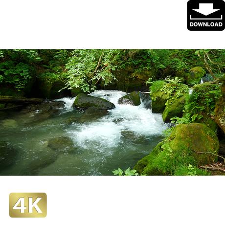 2035086 ■ 奥入瀬渓流 阿修羅の流れ