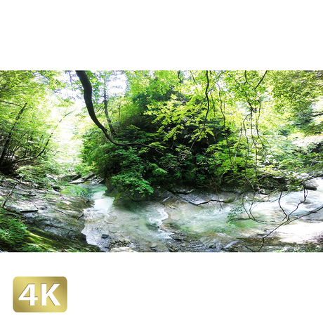 1010004 ■ 西沢渓谷 三重の滝