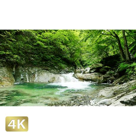 1010014 ■ 西沢渓谷 三重の滝上流