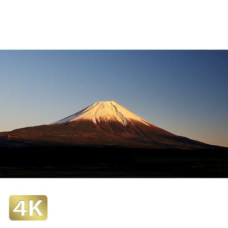 1018071 ■ 富士山 朝霧高原