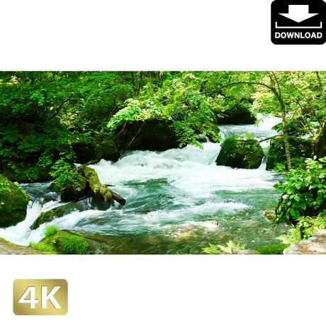 2035107 ■ 奥入瀬渓流 阿修羅の流れ