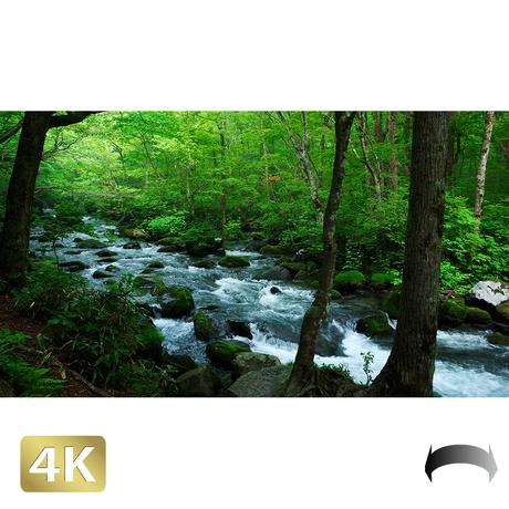 1035022 ■ 奥入瀬渓流 三乱の流れ