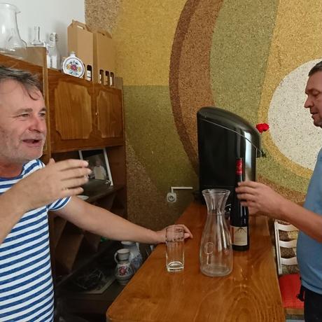 Chardonnay, bio 2012[シャルドネ, ビオ 2012 / Domin & Kušický]