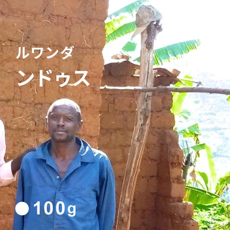 ルワンダ ンドゥス / 浅煎り (Medium Roast)  100g