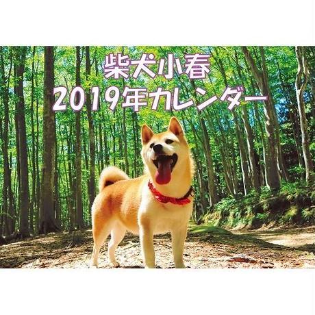 年始到着可能性あり【送料無料】2019年 柴犬小春 壁掛けカレンダー