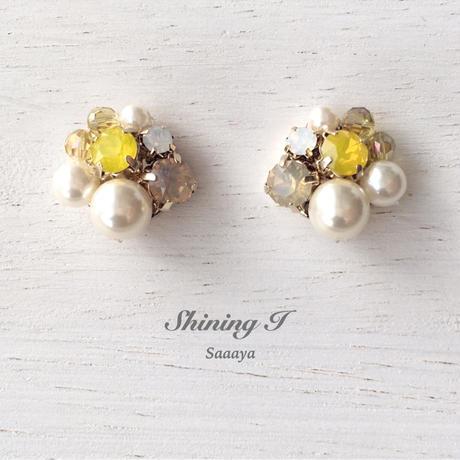 春夏数量限定 Mix stone *B×Y / Earrings