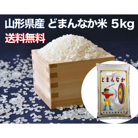 【送料無料】どまんなか米 5kg