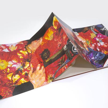 岩田壮平 画集 『cycle』