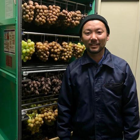 岩手・佐藤ぶどう園さんの生レーズン(シャインマスカット)と完熟ぶどうジュースのギフトセットC