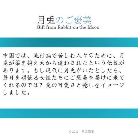 月兎のご褒美(1ティーパック)