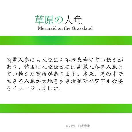 草原の人魚(10ティーパック入り)(1ティーバッグ 6g)